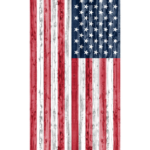 2 yard minky panel - American Flag