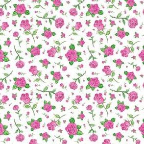 Watercolor Rose Garden in Pink
