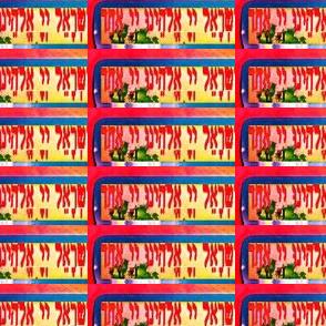 Shema Bat Mitzvah