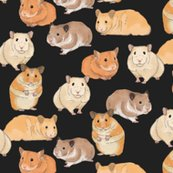Rrrhamsters-in-color-on-slate_shop_thumb