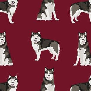 alaskan malamute dog breed pet fabric ruby