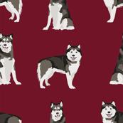 alaskan malamute dog breed pet fabric ruby