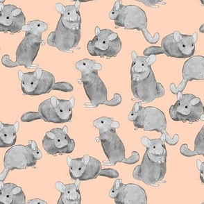 Chinchillas in Black and White on Pink