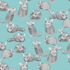 Chinchillas in Black and White on Blue