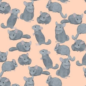 Chinchillas in Color on Pink