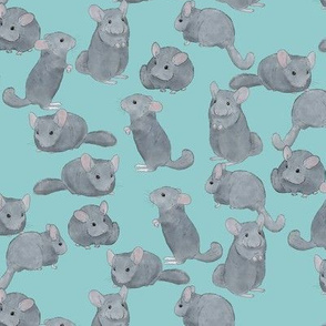 Chinchillas in Color on Light Blue