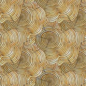 Tree Rings VI
