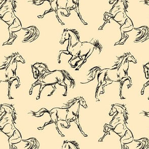 Horse Sketches // Tan