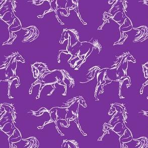 Horse Sketch // Purple