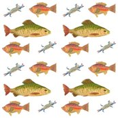 Rheathers-fish-on-white_shop_thumb