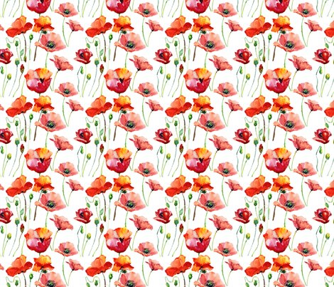 Rcoral_poppies_shop_preview