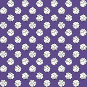 Half Inch Black and White Sports Volleyball Balls on Ultra Violet Purple