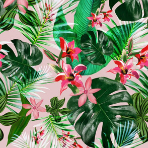 Tropical on pink