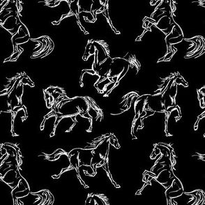 Horse Sketches // Black