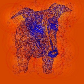 Curly whippet-BlueOnOrange