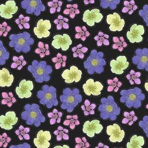 Arctic Flowers on Black