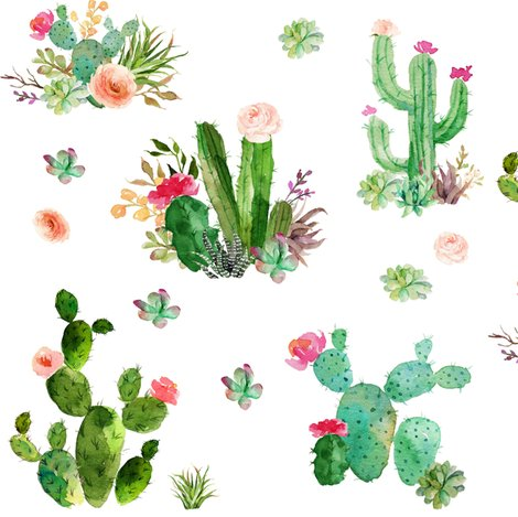 Rwatercolor-succulents_shop_preview