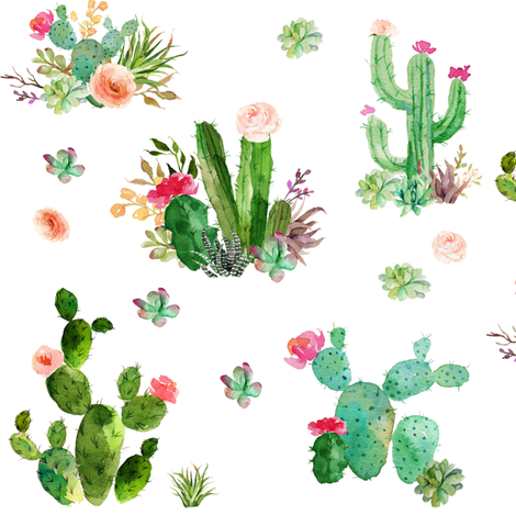 Watercolor Succulents fabric by hipkiddesigns on Spoonflower - custom fabric