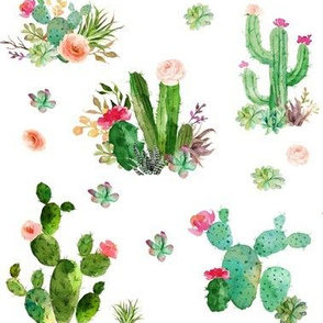 Watercolor Succulents