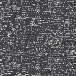 Physics Equations on Charcoal // Small