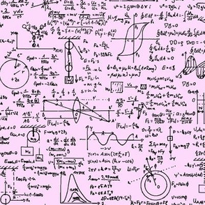 Physics Equations on Pink // Large