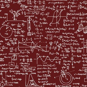 Physics Equations on Burgundy // Large