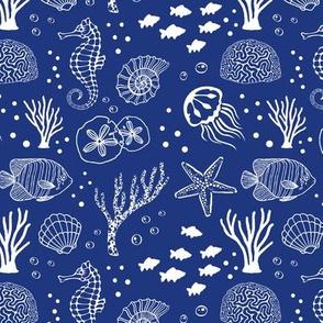 Aquatic Life // Blue