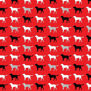 Dog dots
