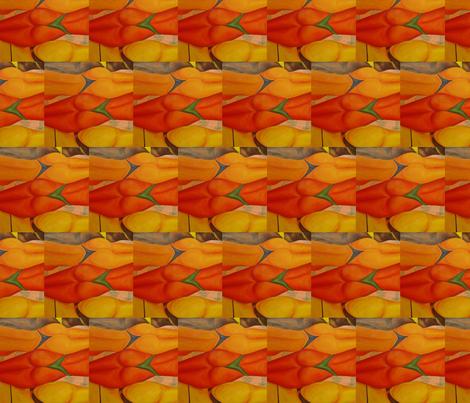 bikini-saison-veronica-ross-mickan (4) fabric by veronica_ross-mickan on Spoonflower - custom fabric