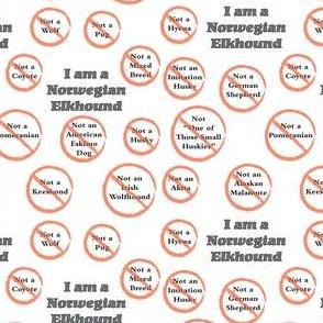 I am a Norwegian Elkhound