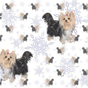 Yorkie Winter Snow 3.5""