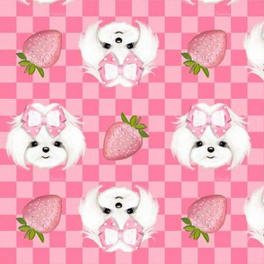 Maltese pink strawberry S