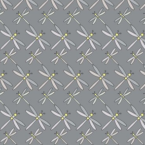 Scottish Dragonflies, Grey