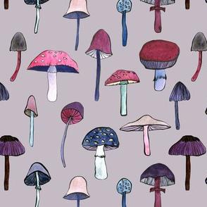 mushroom heaven