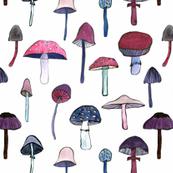 mushroom heaven wit