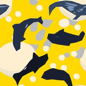 Whales Sun