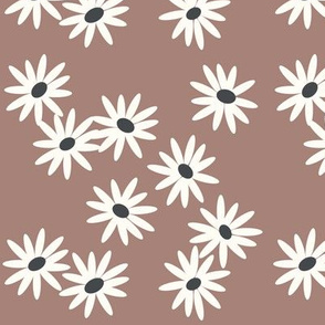 Daisies - flowers floral blooms spring - mauve