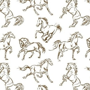 Brown Horse Sketches