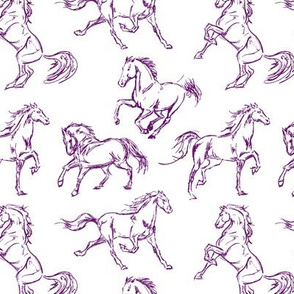 Purple Horse Sketches
