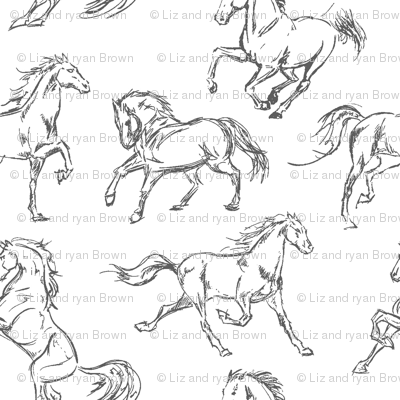 Grey Horse Sketches
