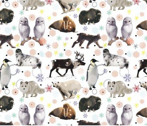 Rarctic-animals-challenge_shop_preview