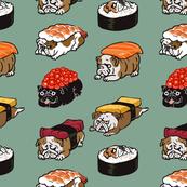 Sushi English Bulldog