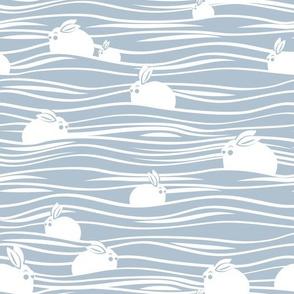 Arctic hares // grey