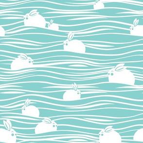 Arctic hares // aqua