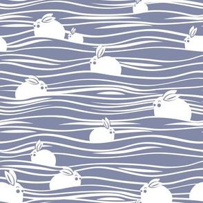 Arctic hares // pale blue