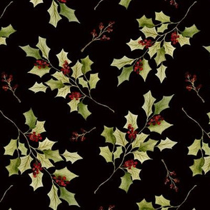 Holly branches black