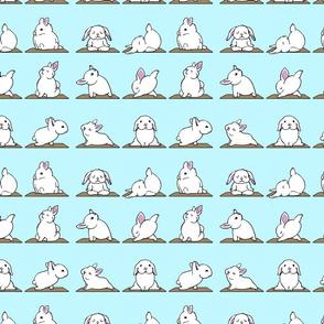 Bunnies Yoga
