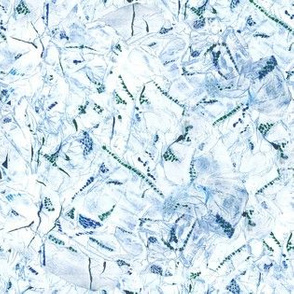 Glacial Jewel