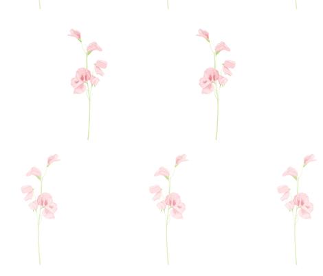 sweet pea fabric by annaboo on Spoonflower - custom fabric