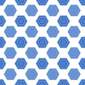 Hexagons in Blues and White